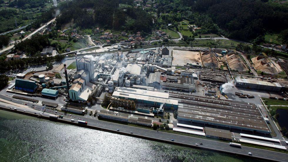 Galicia redujo la emisión de gases de efecto invernadero un 8 % en ...