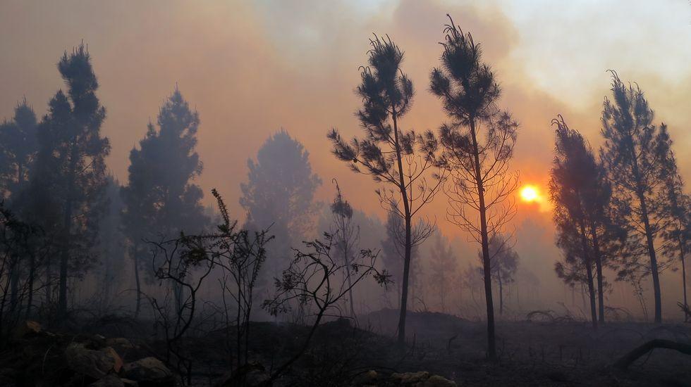 Sigue activo el incendio de Sober que ya ha quemado unas 100 hectáreas
