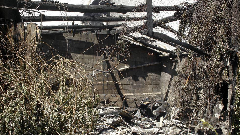 Resultado de imagen de arde casa