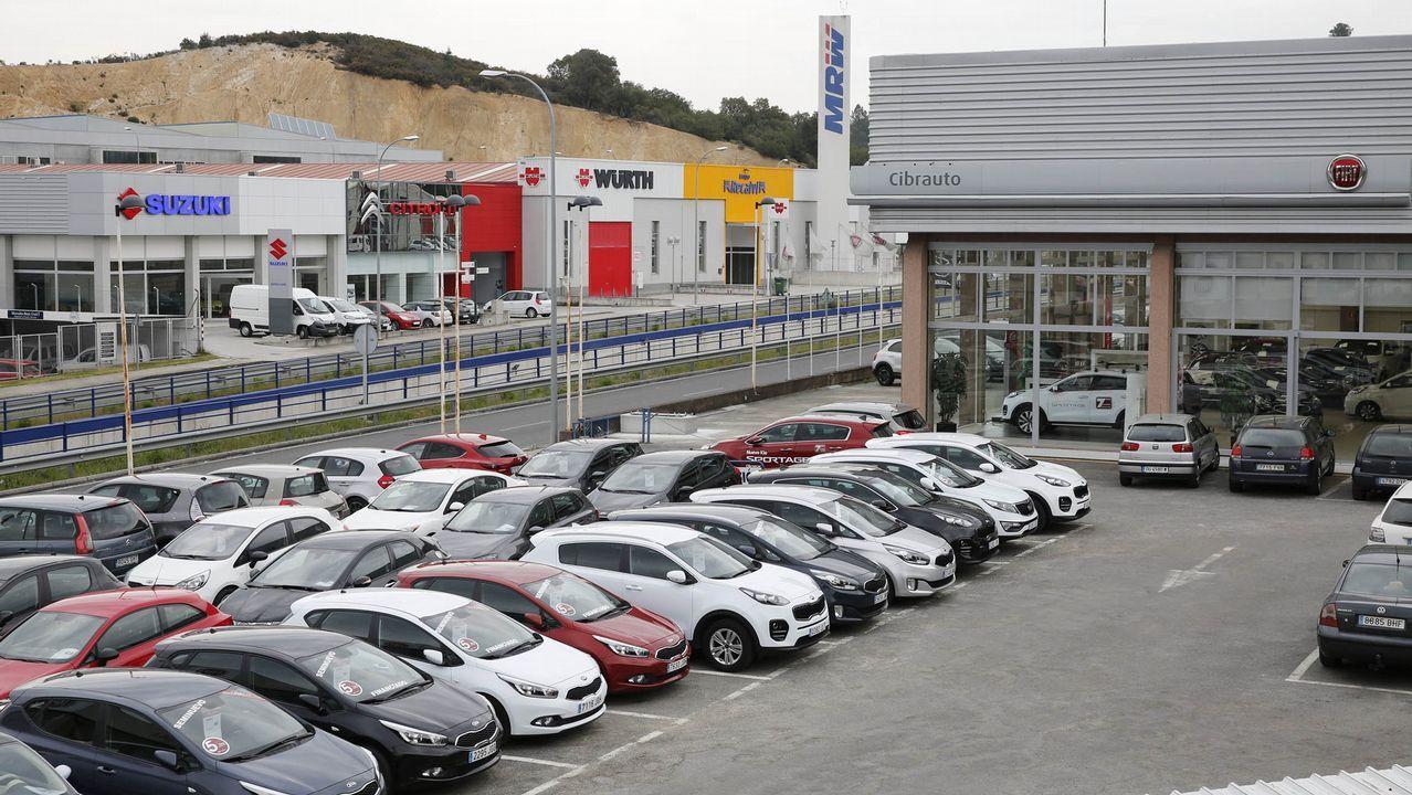 El sector del automóvil aglutina a 17 empresas y 26 marcas en Ourense