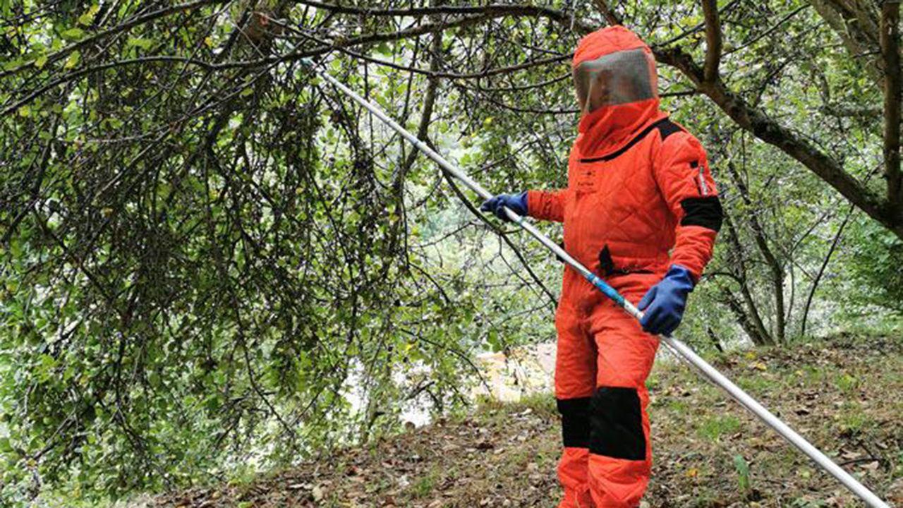 Qué equipo utilizan los profesionales para tratar las infecciones de insectos que pican