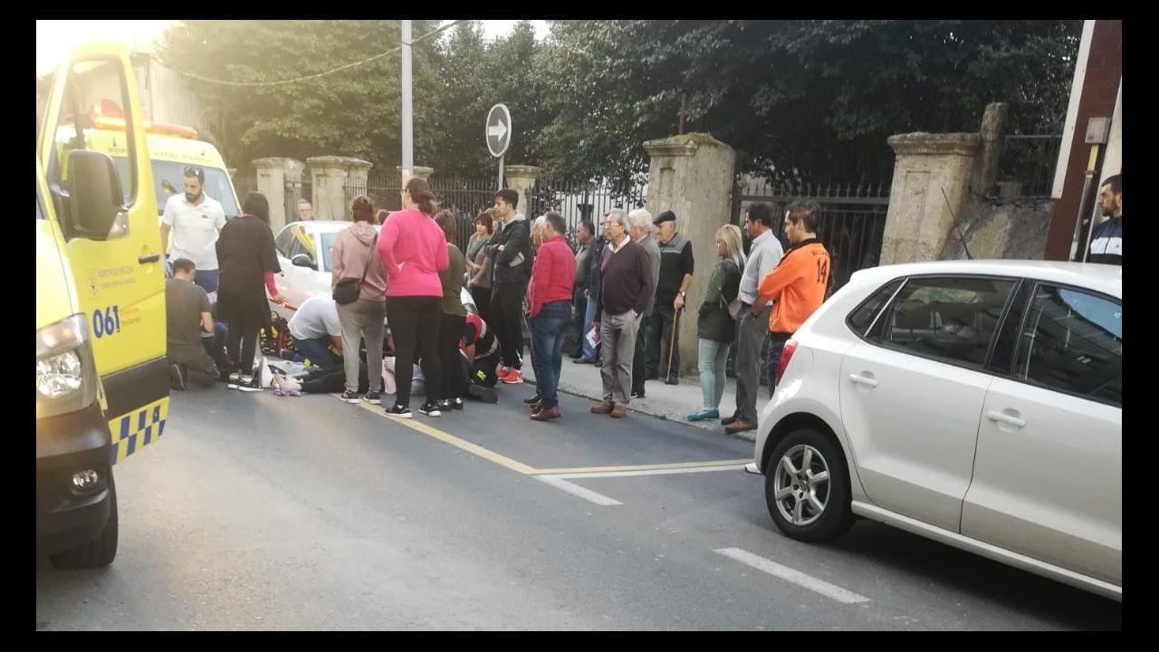 Los jabalíes llegan al Parque de Invierno.Material incautado en la operación policial