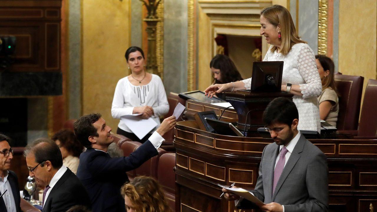 .El nuevo presidente del Partido Popular Pablo Casado, votando, durante el pleno