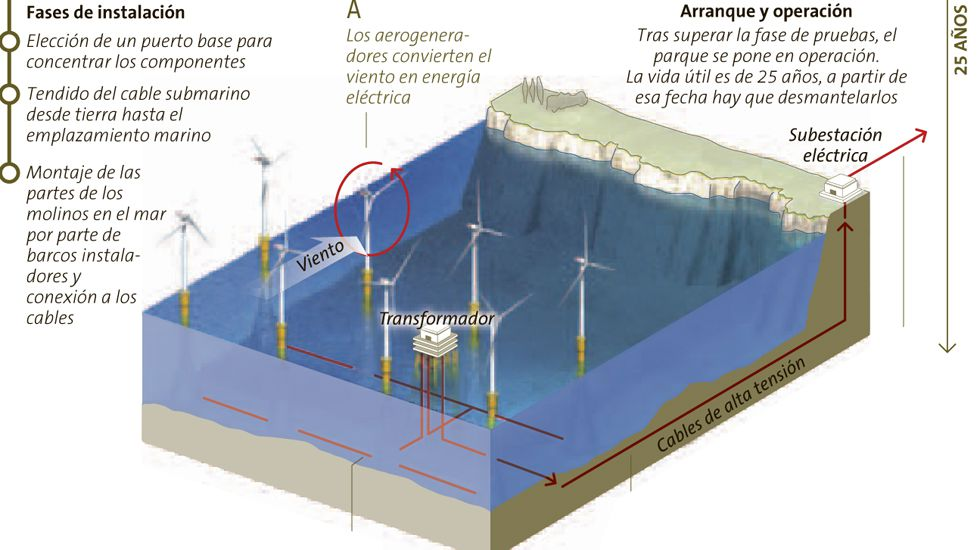 La creación de un parque eólico marino paso a paso