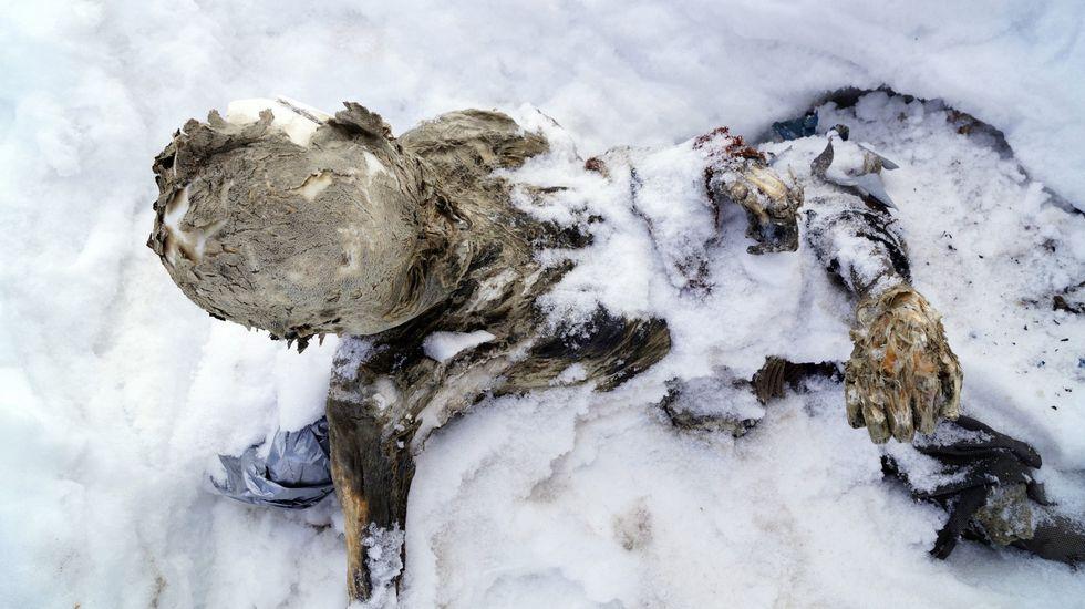 Cuatro rutas estrella en la Ribeira Sacra.Cuerpo momificado hallado en el Pico de Orizaba hace varios meses