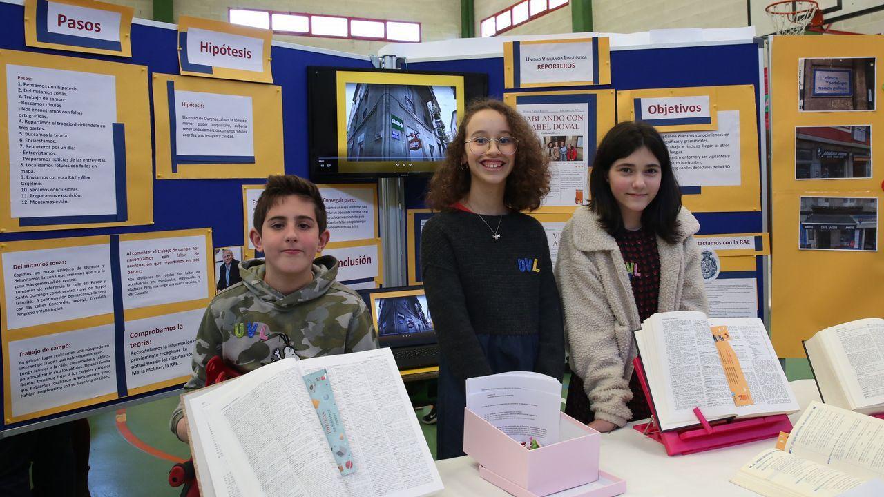 Tres alumnos de Primaria corrigen faltas ortográficas de carteles de Ourense.Calle de Oviedo