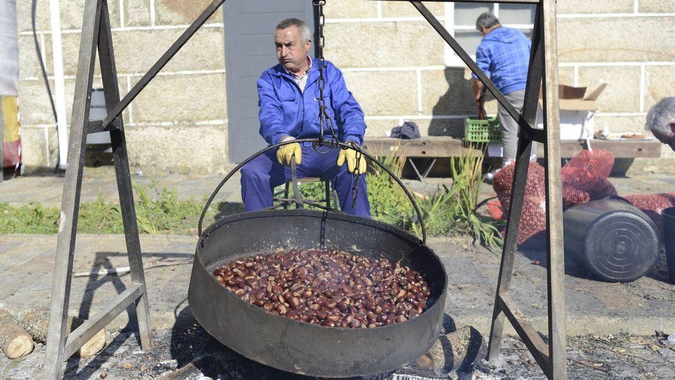 XXIV Festa da castaña e do cogumelo en Riós.Las ayudas son para plantación de viñedo