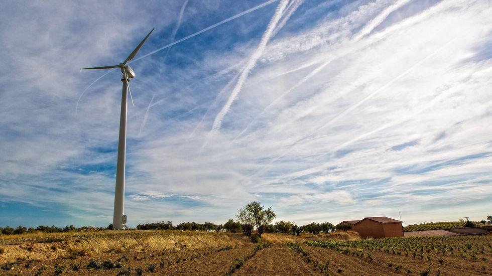 Los ferrocarriles de Holanda funcionan con energía eólica y así lo anuncia su presidente.Molino de energía eólica