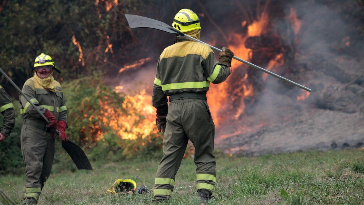 La intencionalidad de los incendios está constatada por la Fiscalía en el 61% de los casos