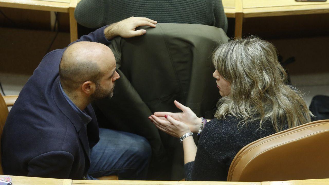 Feijoo presume de hospitales y centros de salud públicos en su mensaje de Año Nuevo.Luís Villares y Carmen Santos conversan en el Parlamento de Galicia