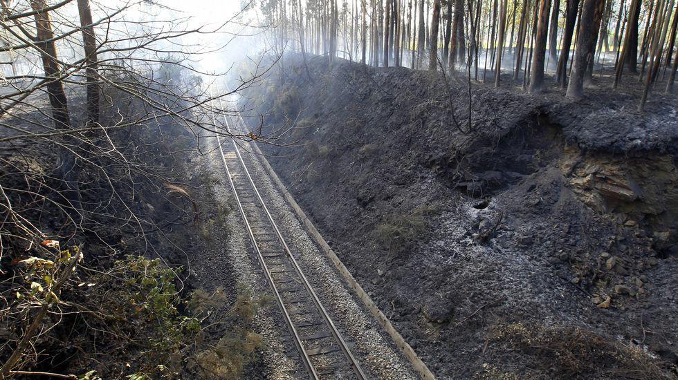 Uno de los incendios acaecidos en Asturias en diciembre 2015.Panorama tras un incendio en El Franco (Asturias)