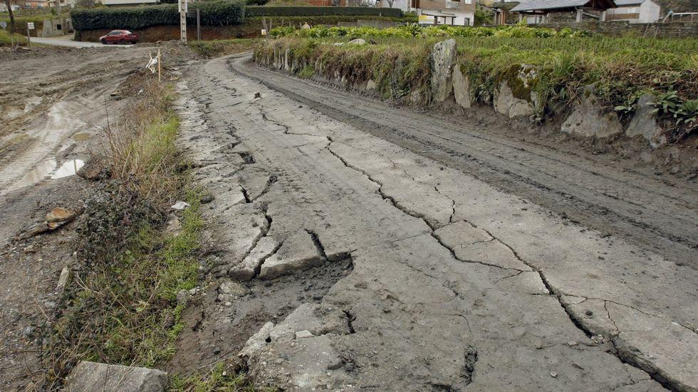 La lluvia y el granizo obligan a adelantar la vendimia para evitar enfermedades.Serán plantados varios miles de castaños