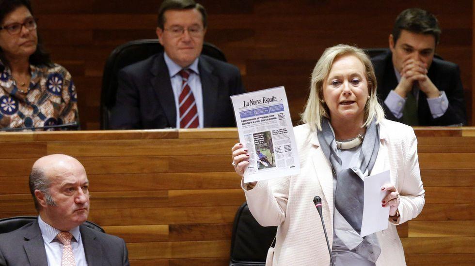 KPS.La presidenta del PP, Mercedes Fernández, durante su intervención en el pleno de la Junta General del Principado