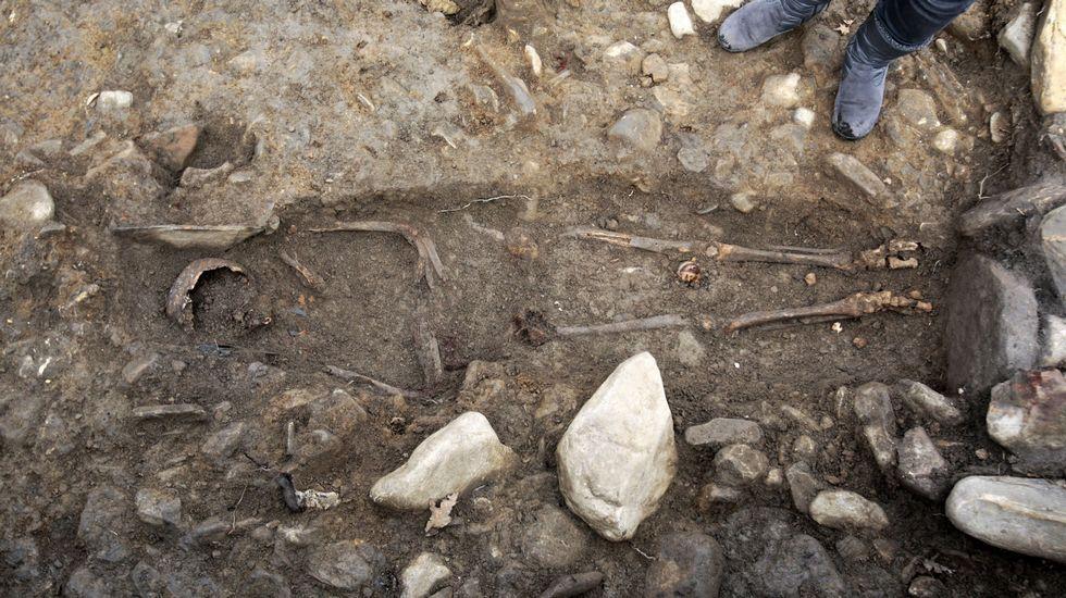.Esqueleto achado nunha das tumbas escavadas no castro de San Lourenzo (Cereixa, Lugo)