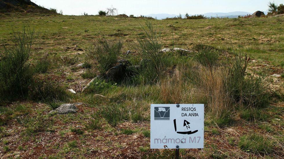 Ruta de senderismo de Moura (Nogueira de Ramuín). Necrópolis megalítica de Moura