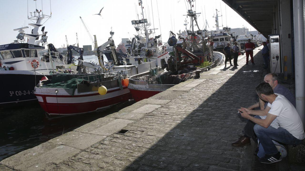 La luz más cara del año.Mariscadoras recogiendo ostra japonesa en la ría de O Barqueiro