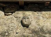 Una cara humana talla en Barantes de Arriba