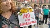 Concentración contra el envenenamiento de perros en Gijón