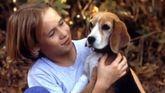 Fotograma de la película «Shiloh» que grabó cuando era un niño