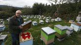 El apicultor mariñano Jesús López Pernas perdio parte de sus colmenas en Ourol