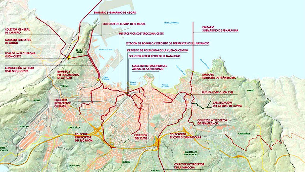 Un ejemplar de lobo.Mapa de la red de saneamiento en Gijón
