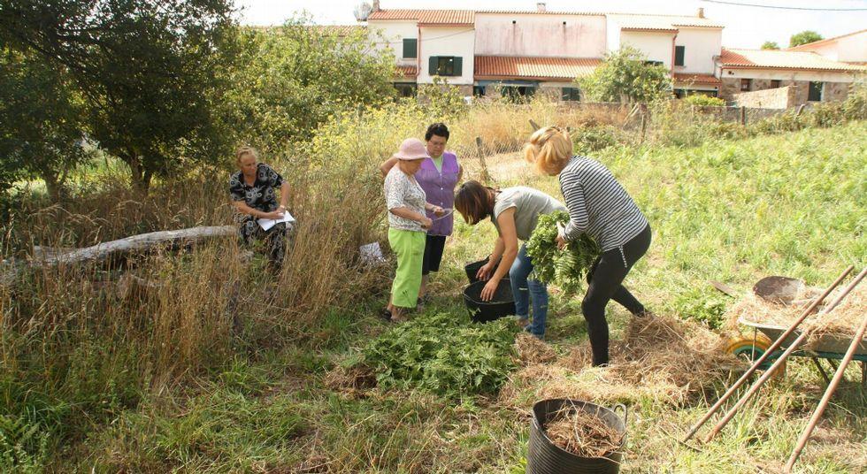En Carballo y Coristanco se han realizado degustaciones para dar a conocer los productos.