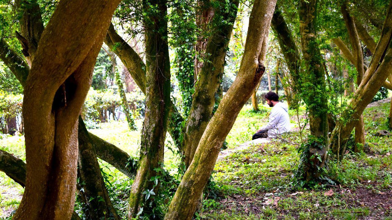 La Isla Interior son dos días de talleres sin tecnología en San Simón