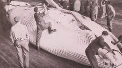 Cuando éramos cazadores de ballenas