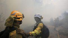 Controlado el incendio forestal en Mandiá