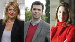 Gallegos en el comité federal del PSOE