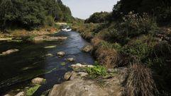 Cuatro ejemplos de ríos de la cuencia Miño-Sil bajos de caudal