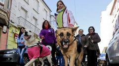Marcha canina contra el maltrato animal