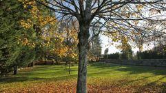 El otoño será más cálido de lo normal en Galicia