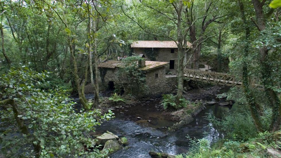 COto de Verdes. Río Anllóns