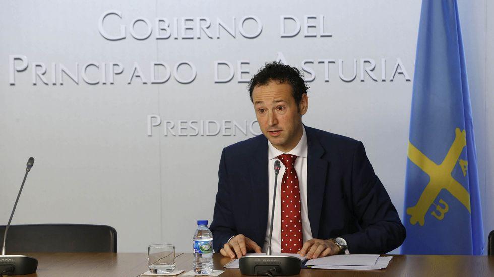 El consejero de Sanidad, Francisco del Busto, comparece en el pleno de la Junta General.Arzobispado de Oviedo