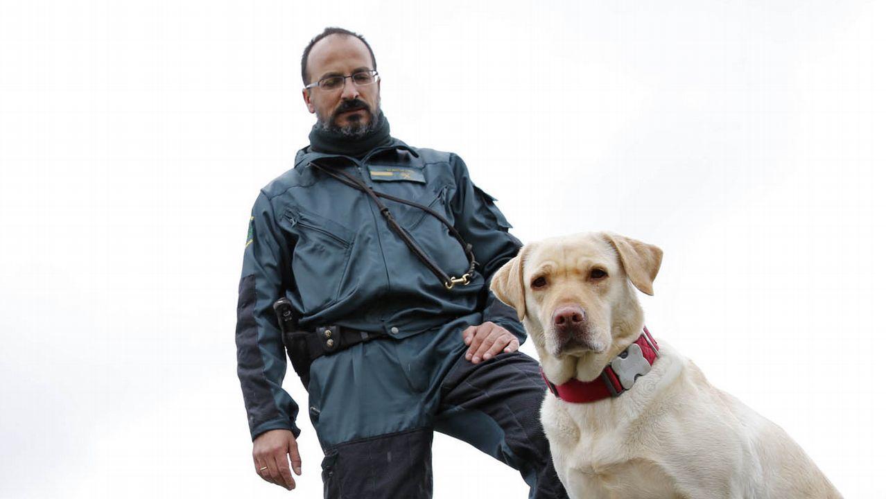 Lucha contra el fuego en Rianxo.Carlos Lozano es jefe del servicio cinológico de la Guardia Civil con sede en Ourense. En la imagen, del año 2017, posa con con uno de sus perros