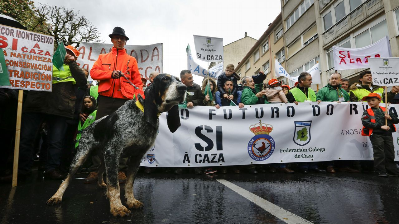 Así fue la movilización de los cazadores gallegos en Santiago.