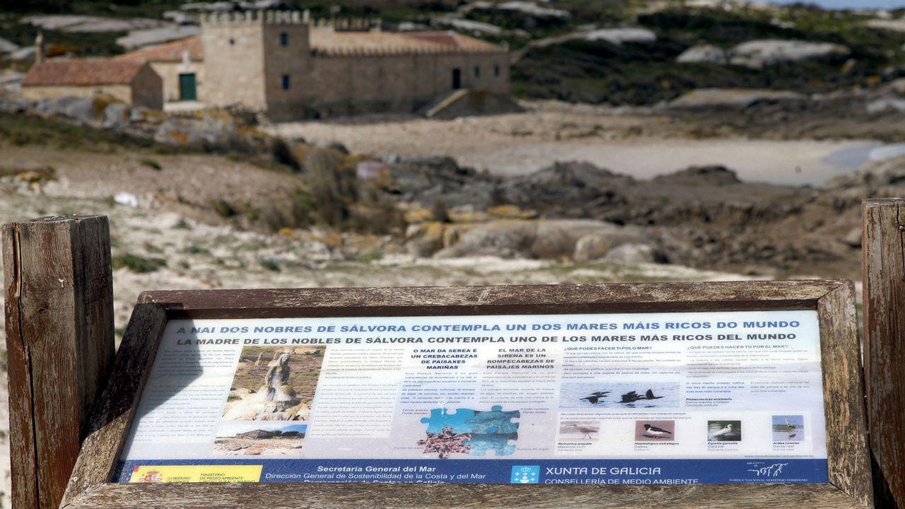 Paseo por As Avenidas en Vigo para comprobar su estado