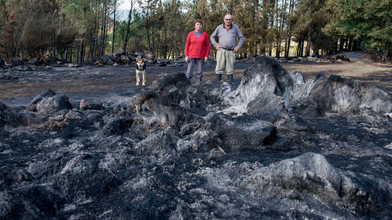 De Ourense bonito a Ourense quemado