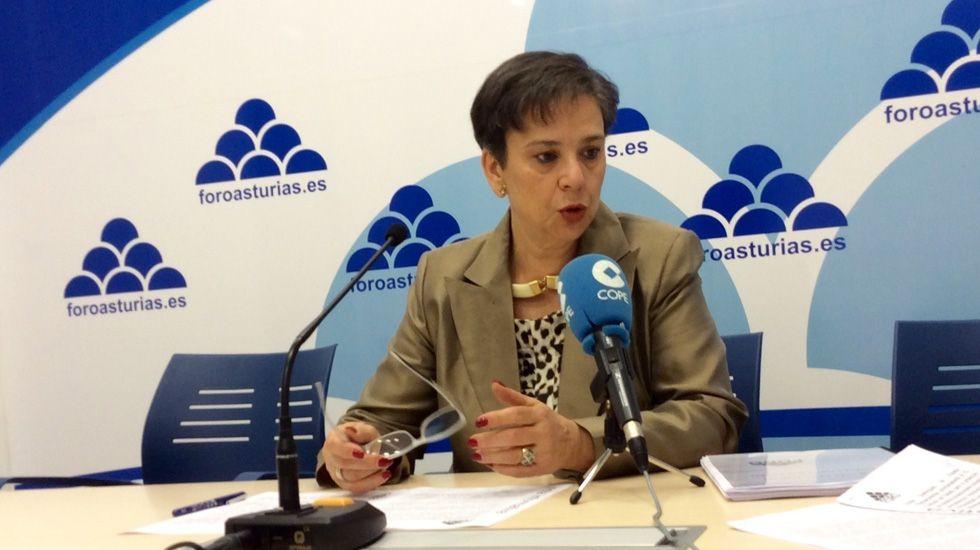 David Moreno preside el pleno del 20 de abril en Aller, en el que el Gobierno dejó de ser del PSOE.Rosa Domínguez de Posada