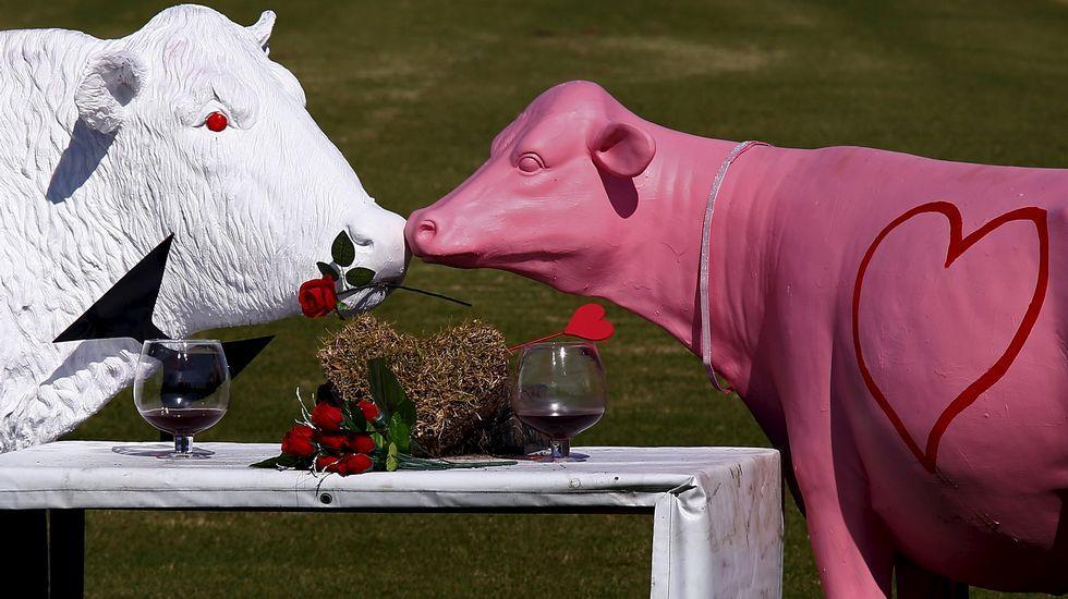 Cita de San Valentín de dos esculturas en Australia