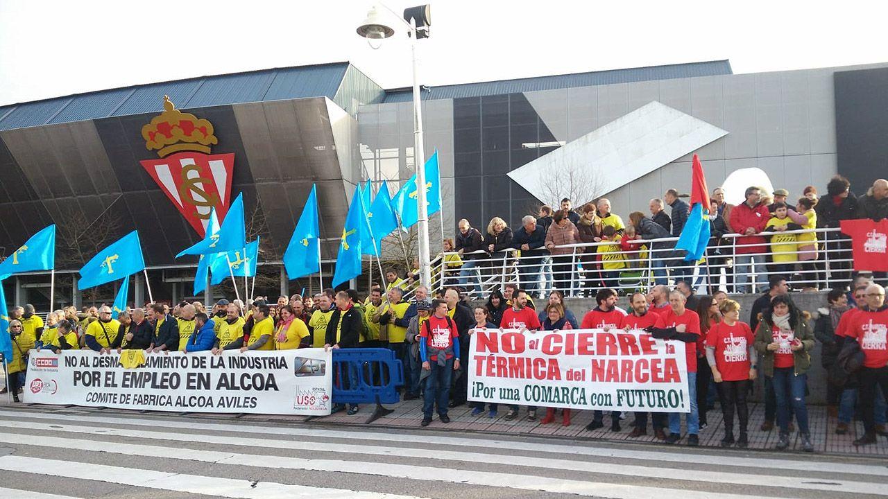 La primavera colorea Galicia.Trabajadores de Alcoa y de la térmica del Narcea, entre otras empresas, recibieron con una protesta a Pedro Sánchez en Gijón