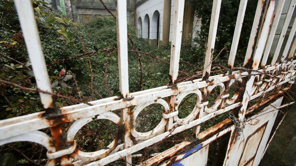.La maleza ha ocupado el patio interior del recinto de la vieja sede de Aduanas