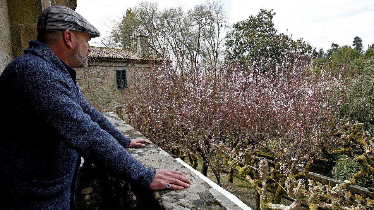 Faramello presencia el Sakura gallego.La secuoyas en Poio