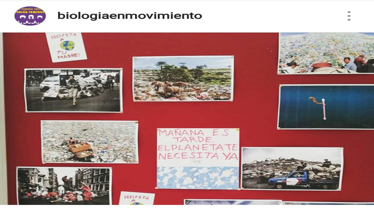 Mejores formas de reciclar.Seminario de Oviedo