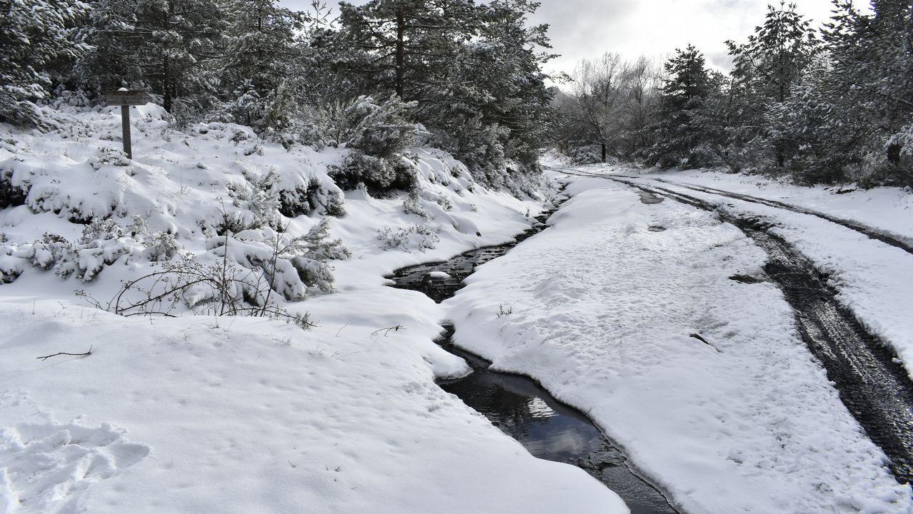 Otro aspecto del acceso al alto de Catro Cabaleiros des de A Pobra do Brollón, donde la nieve depositada sobre el suelo alcanzó un notable grosor