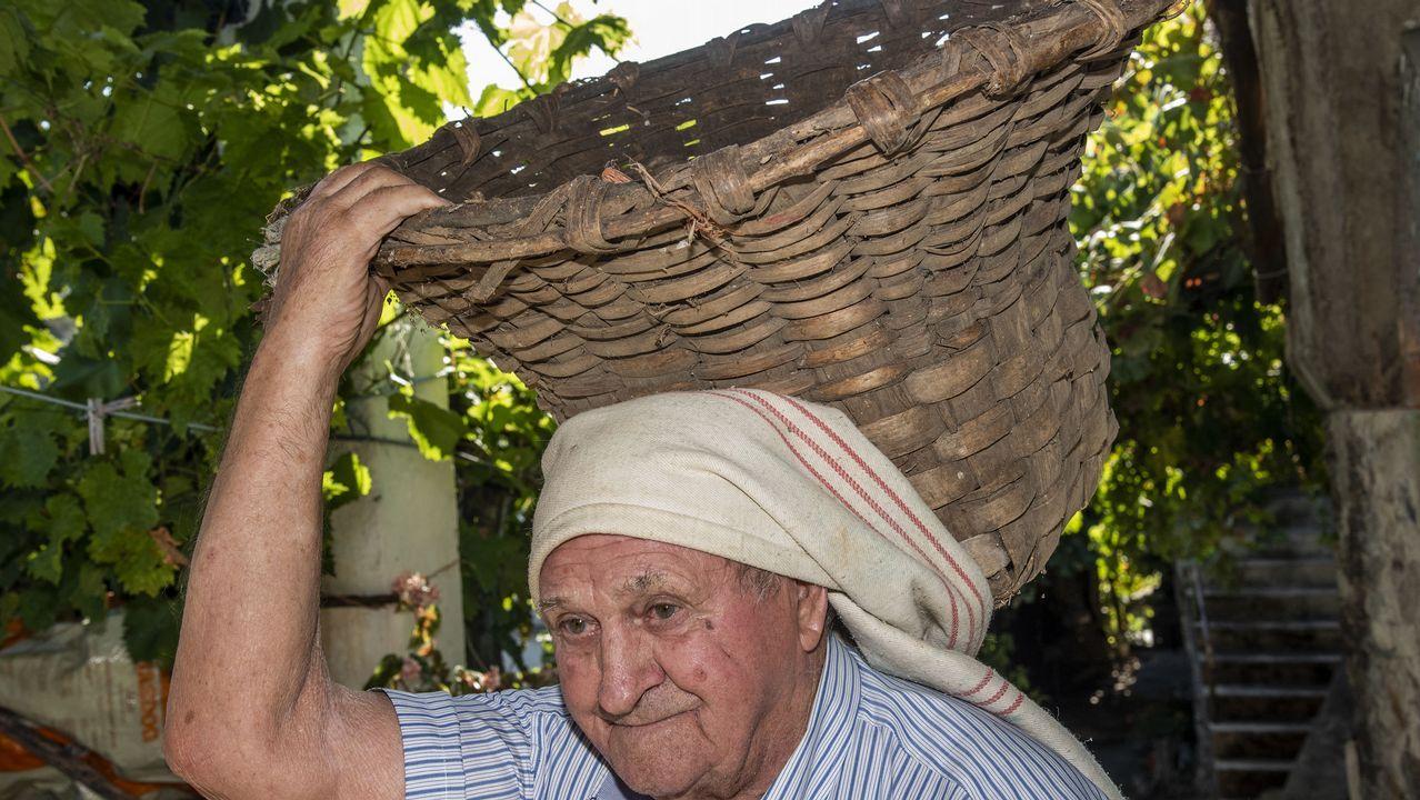 Daniel Rodríguez, antiguo encargado del molino de aceite, con una cesta para transportar aceitunas