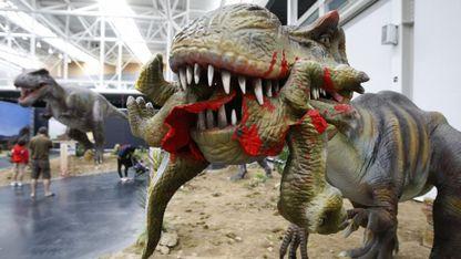 O impacto dun meteorito en Chicxulub hai 65 millóns de anos puido ser a causa da desaparición dos grandes dinosauros