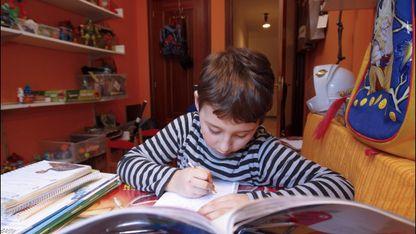A axuda debe centrarse en que o alumno aprenda a autorregularse a súa aprendizaxe