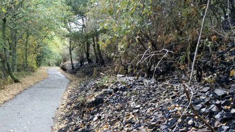 Estado en el que quedaron los montes de Degaña tras los incendios